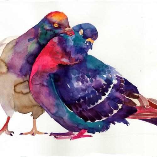 pigeons_by_takmaj-d8mjgt2 (2)